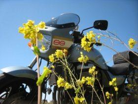 今週の日記ピックアップは、やっと晴れた!菜の花散策ツーリング[J.TAKAHIRA99さん ツーリング日記]